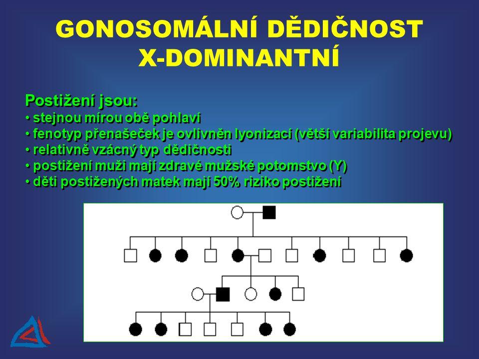 Postižení jsou: stejnou mírou obě pohlaví fenotyp přenašeček je ovlivněn lyonizací (větší variabilita projevu) relativně vzácný typ dědičnosti postižení muži mají zdravé mužské potomstvo (Y) děti postižených matek mají 50% riziko postižení Postižení jsou: stejnou mírou obě pohlaví fenotyp přenašeček je ovlivněn lyonizací (větší variabilita projevu) relativně vzácný typ dědičnosti postižení muži mají zdravé mužské potomstvo (Y) děti postižených matek mají 50% riziko postižení GONOSOMÁLNÍ DĚDIČNOST X-DOMINANTNÍ
