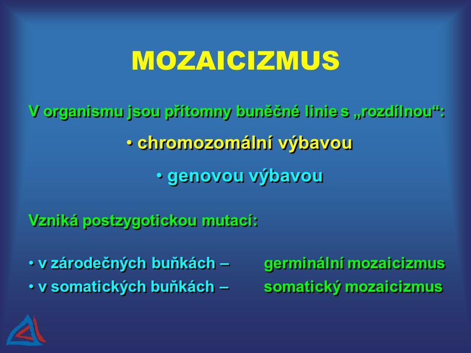 """V organismu jsou přítomny buněčné linie s """"rozdílnou : chromozomální výbavou genovou výbavou V organismu jsou přítomny buněčné linie s """"rozdílnou : chromozomální výbavou genovou výbavou Vzniká postzygotickou mutací: v zárodečných buňkách –germinální mozaicizmus v somatických buňkách –somatický mozaicizmus Vzniká postzygotickou mutací: v zárodečných buňkách –germinální mozaicizmus v somatických buňkách –somatický mozaicizmus MOZAICIZMUS"""