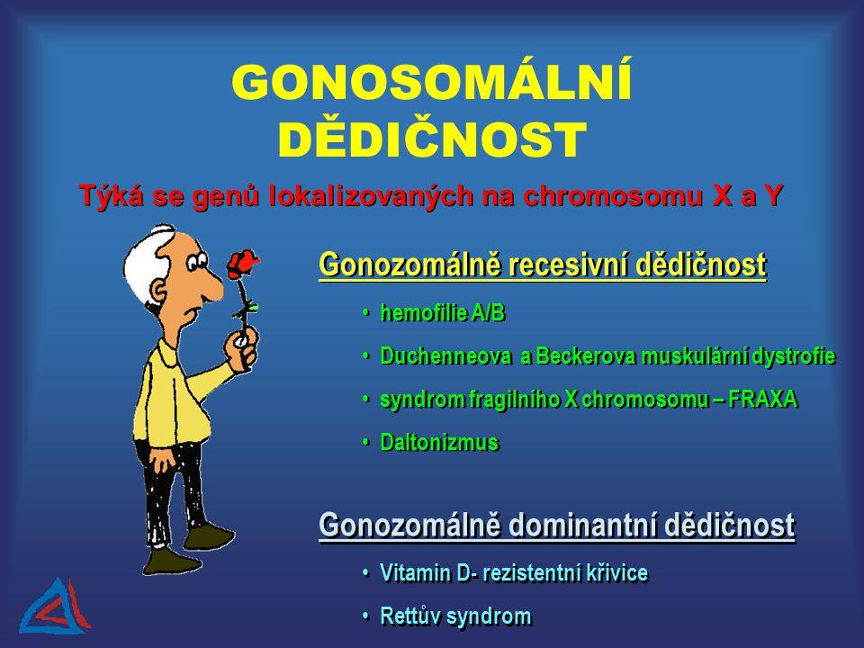 GONOSOMÁLNÍ DĚDIČNOST Gonozomálně recesivní dědičnost hemofilie A/B Duchenneova a Beckerova muskulární dystrofie syndrom fragilního X chromosomu – FRA