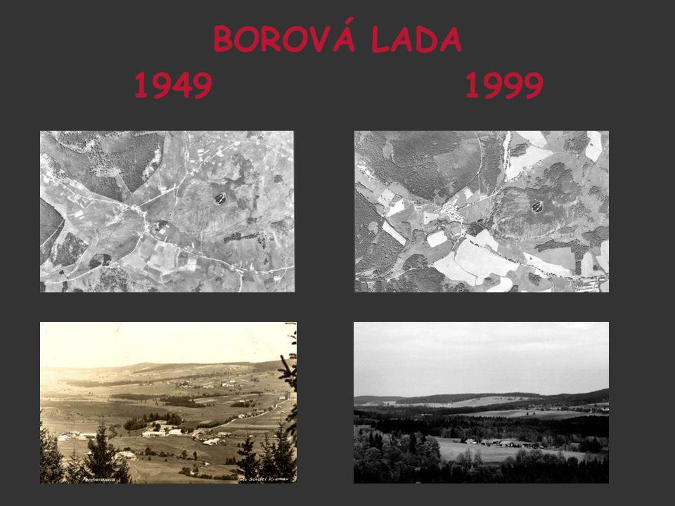 BOROVÁ LADA 1949 1999