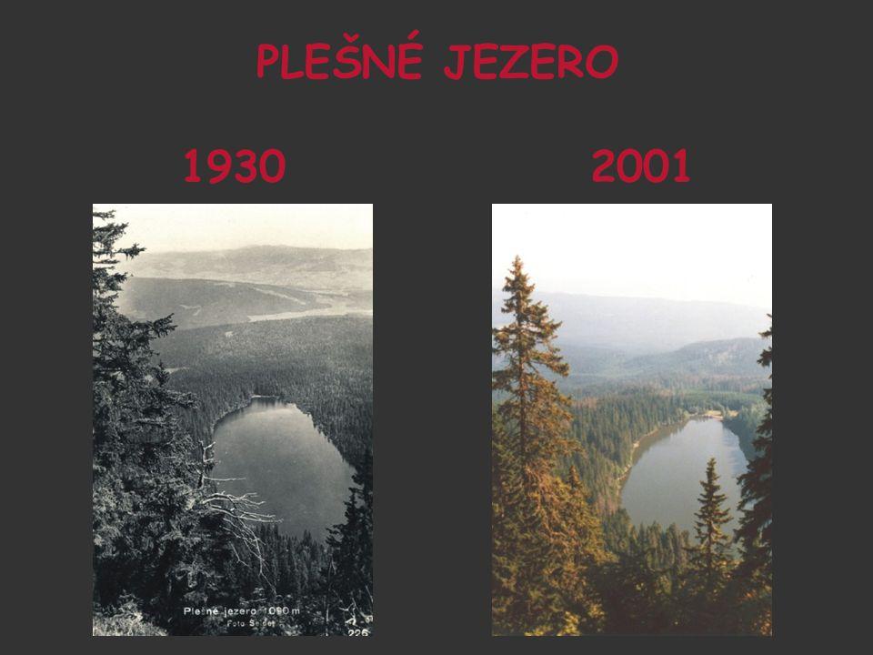PLEŠNÉ JEZERO 1930 2001