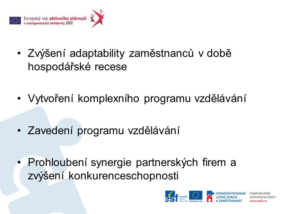 Zvýšení adaptability zaměstnanců v době hospodářské recese Vytvoření komplexního programu vzdělávání Zavedení programu vzdělávání Prohloubení synergie partnerských firem a zvýšení konkurenceschopnosti