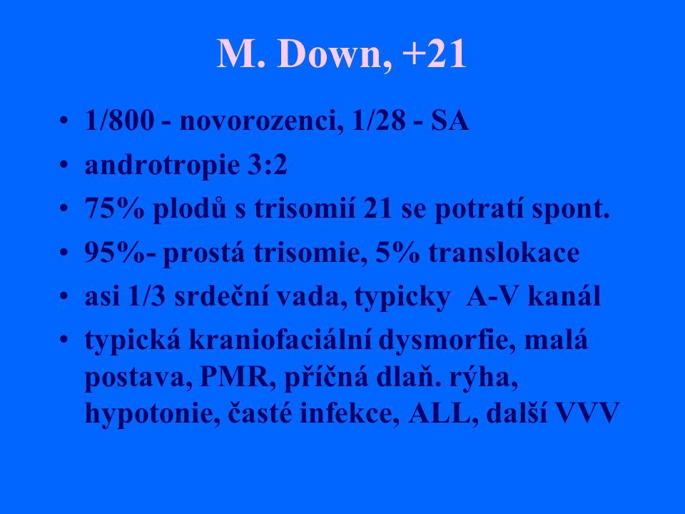 M. Down, +21 1/800 - novorozenci, 1/28 - SA androtropie 3:2 75% plodů s trisomií 21 se potratí spont. 95%- prostá trisomie, 5% translokace asi 1/3 srd