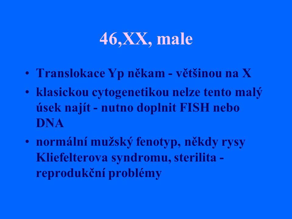 46,XX, male Translokace Yp někam - většinou na X klasickou cytogenetikou nelze tento malý úsek najít - nutno doplnit FISH nebo DNA normální mužský fen