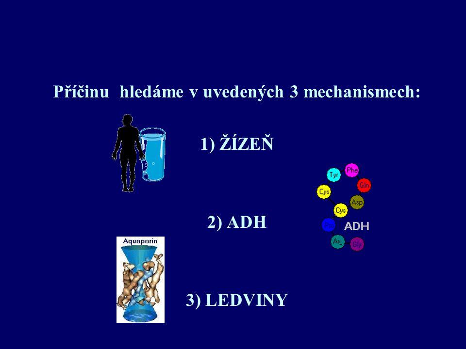 Příčinu hledáme v uvedených 3 mechanismech: 1) ŽÍZEŇ 2) ADH 3) LEDVINY