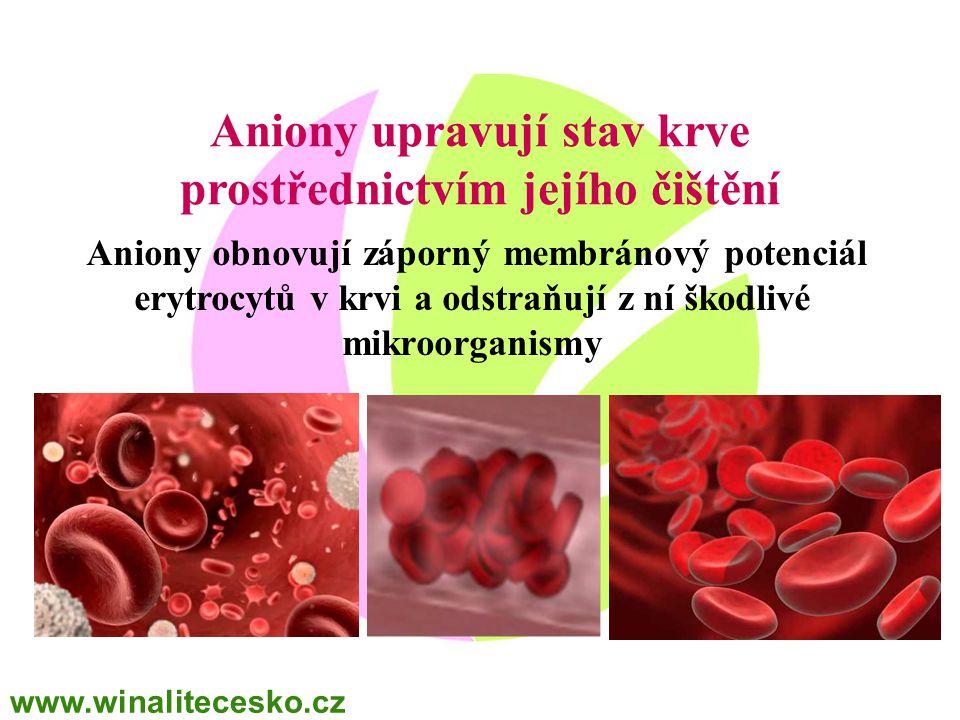 Aniony obnovují záporný membránový potenciál erytrocytů v krvi a odstraňují z ní škodlivé mikroorganismy Aniony upravují stav krve prostřednictvím jej