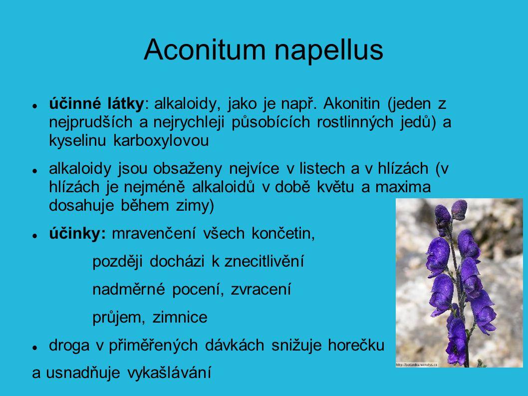 Aconitum napellus účinné látky: alkaloidy, jako je např.