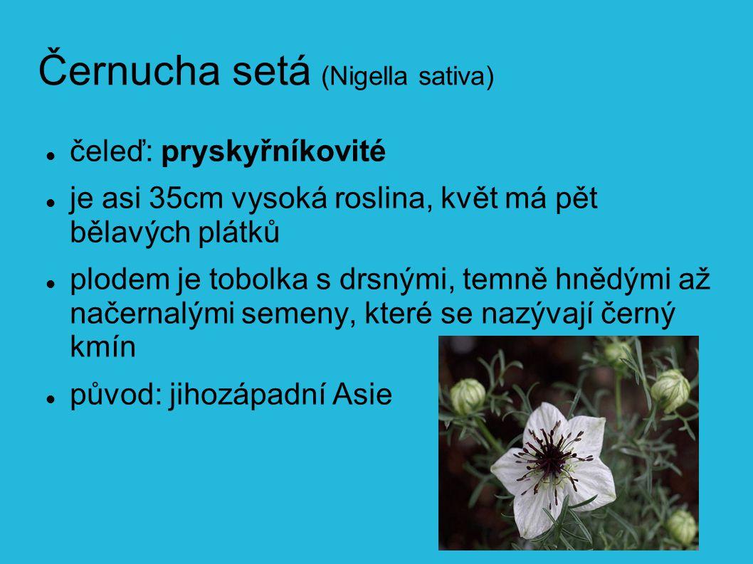 Černucha setá (Nigella sativa) čeleď: pryskyřníkovité je asi 35cm vysoká roslina, květ má pět bělavých plátků plodem je tobolka s drsnými, temně hnědými až načernalými semeny, které se nazývají černý kmín původ: jihozápadní Asie