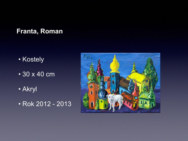 Franta, Roman Kostely 30 x 40 cm Akryl Rok 2012 - 2013
