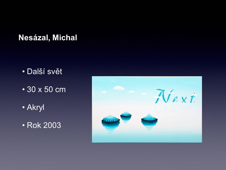 Nesázal, Michal Další svět 30 x 50 cm Akryl Rok 2003