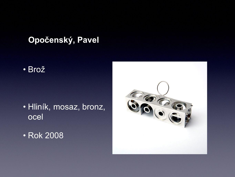 Opočenský, Pavel Brož Hliník, mosaz, bronz, ocel Rok 2008