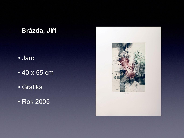 Brázda, Jiří Jaro 40 x 55 cm Grafika Rok 2005