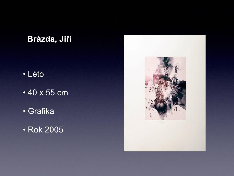 Brázda, Jiří Podzim 40 x 55 cm Grafika Rok 2005