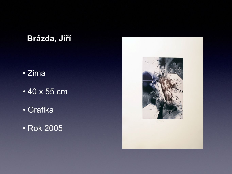 Brázda, Jiří Zima 40 x 55 cm Grafika Rok 2005