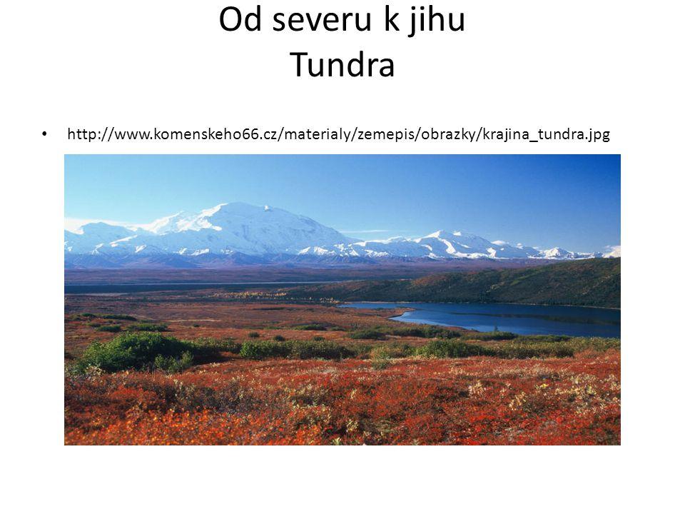 Od severu k jihu Tundra http://www.komenskeho66.cz/materialy/zemepis/obrazky/krajina_tundra.jpg