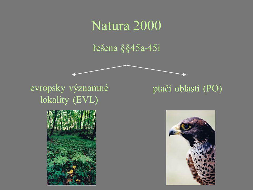 Památné stromy registrovány podle §46 významné stromy, jejich skupiny a stromořadí ochranné pásmo - kruh o poloměru desetinásobku výčetní tloušťky 1,3 m