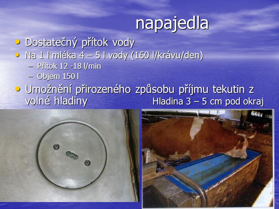 napajedla Dostatečný přítok vody Dostatečný přítok vody Na 1 l mléka 4 – 5 l vody (160 l/krávu/den) Na 1 l mléka 4 – 5 l vody (160 l/krávu/den) –Příto