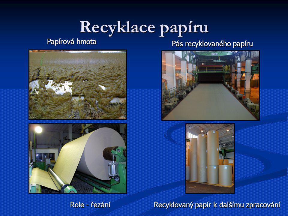 Recyklace papíru Papírová hmota Pás recyklovaného papíru Role - řezání Recyklovaný papír k dalšímu zpracování