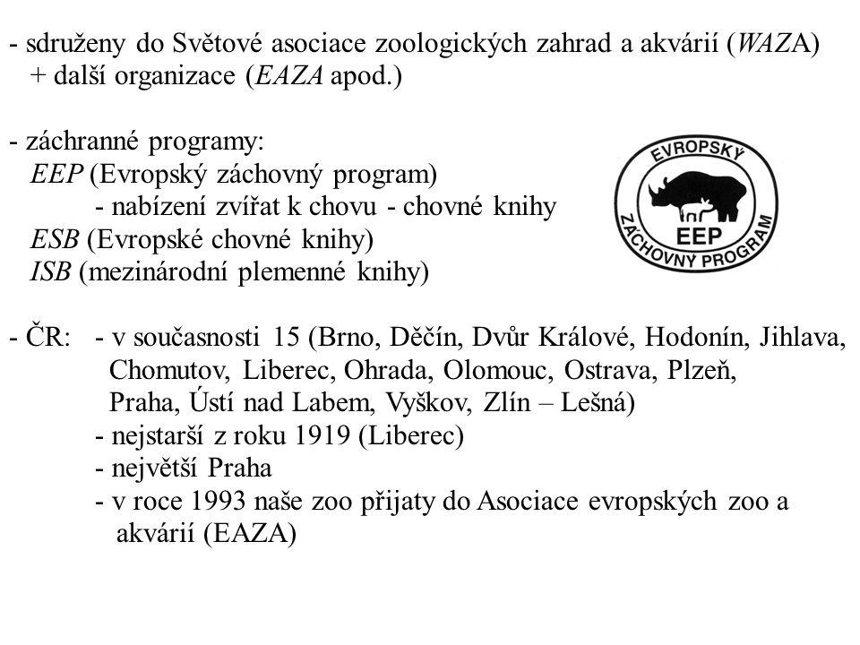 - sdruženy do Světové asociace zoologických zahrad a akvárií (WAZA) + další organizace (EAZA apod.) - záchranné programy: EEP (Evropský záchovný program) - nabízení zvířat k chovu - chovné knihy ESB (Evropské chovné knihy) ISB (mezinárodní plemenné knihy) - ČR:- v současnosti 15 (Brno, Děčín, Dvůr Králové, Hodonín, Jihlava, Chomutov, Liberec, Ohrada, Olomouc, Ostrava, Plzeň, Praha, Ústí nad Labem, Vyškov, Zlín – Lešná) - nejstarší z roku 1919 (Liberec) - největší Praha - v roce 1993 naše zoo přijaty do Asociace evropských zoo a akvárií (EAZA)