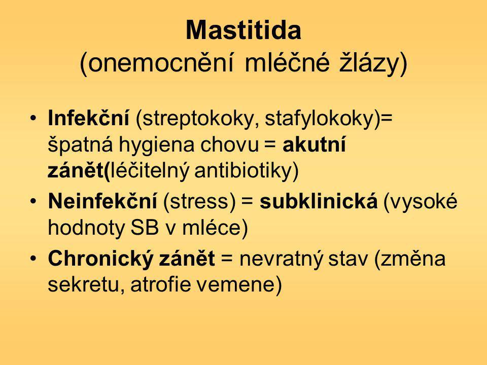 Mastitida (onemocnění mléčné žlázy) Infekční (streptokoky, stafylokoky)= špatná hygiena chovu = akutní zánět(léčitelný antibiotiky) Neinfekční (stress) = subklinická (vysoké hodnoty SB v mléce) Chronický zánět = nevratný stav (změna sekretu, atrofie vemene)