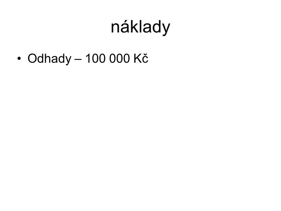 náklady Odhady – 100 000 Kč