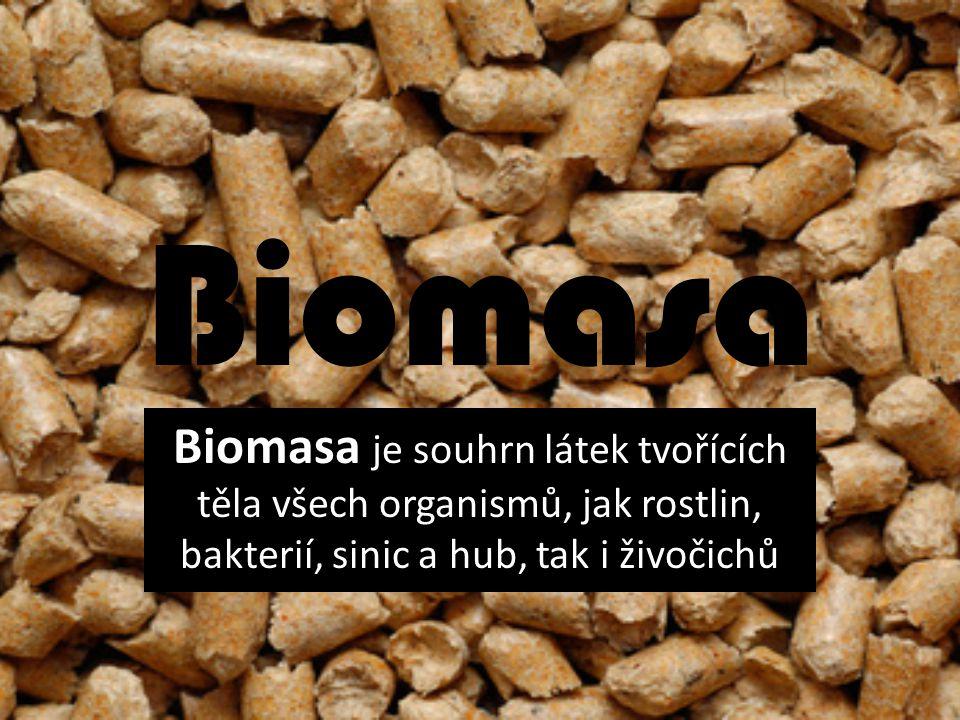 Biomasa Biomasa je souhrn látek tvořících těla všech organismů, jak rostlin, bakterií, sinic a hub, tak i živočichů