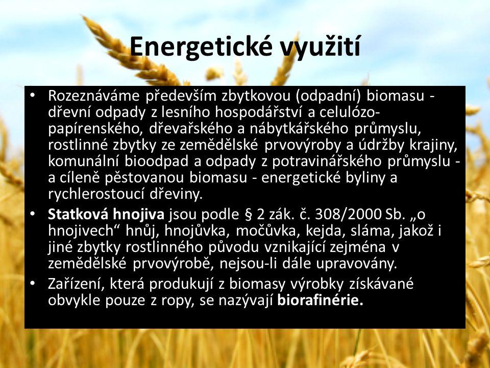Energetické využití Rozeznáváme především zbytkovou (odpadní) biomasu - dřevní odpady z lesního hospodářství a celulózo- papírenského, dřevařského a n