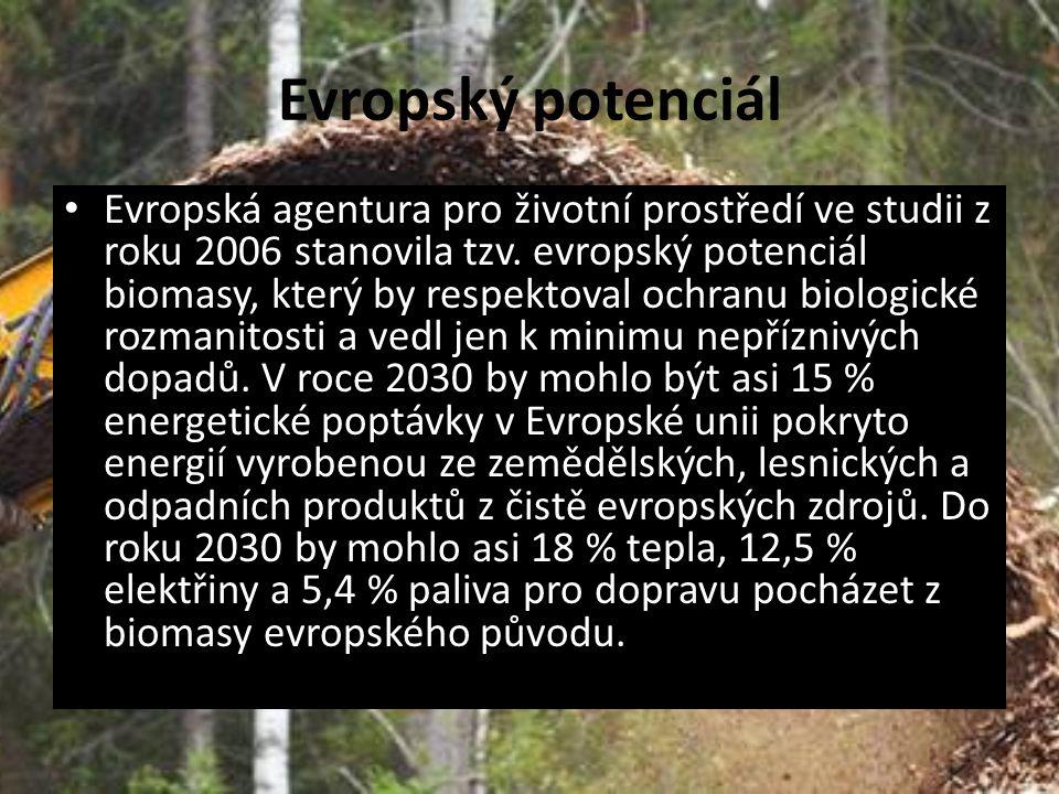 Evropský potenciál Evropská agentura pro životní prostředí ve studii z roku 2006 stanovila tzv. evropský potenciál biomasy, který by respektoval ochra