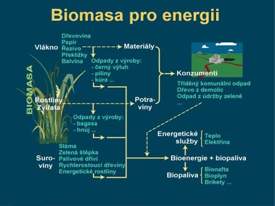 Zdroje http://cs.wikipedia.org/wiki/Biomasa Další info k tématu: Seznam kotelen na biomasu- http://www.calla.cz/atlas/list.php?type=2 stránky České sdružení pro biomasu- http://biom.cz/ Alternativní zdroje energie- http://www.alternativni- zdroje.cz/vyroba-energie-biomasa.htm Energie biomasy-http://old.ekowatt.cz/library/infolisty/infolisty2007/biomasa.pdf Co je biomasa a jak se s ní topí- http://hobby.idnes.cz/co-je-biomasa-a- jak-se-s-ni-topi-manual-nejen-pro-katerinu-jacques-pww-/hobby- domov.aspx?c=A090407_171941_hobby-domov_mce Michael Goldmann, 2.L 01.04.
