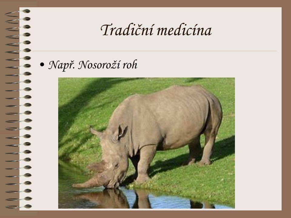 Tradiční medicína Např. Nosoroží roh