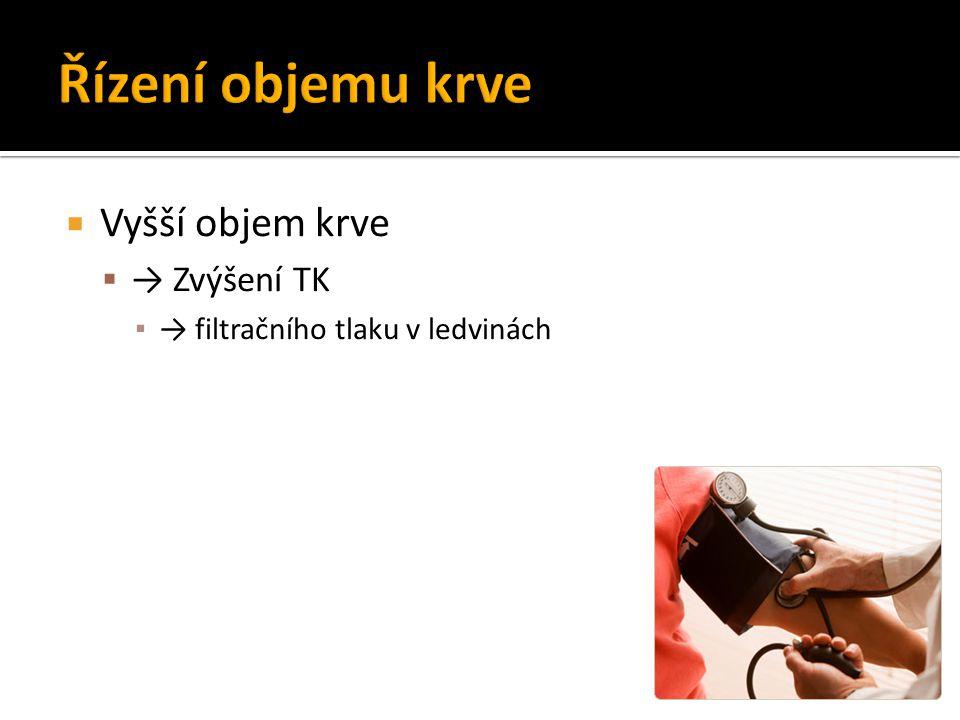  Vyšší objem krve  → Zvýšení TK ▪ → filtračního tlaku v ledvinách