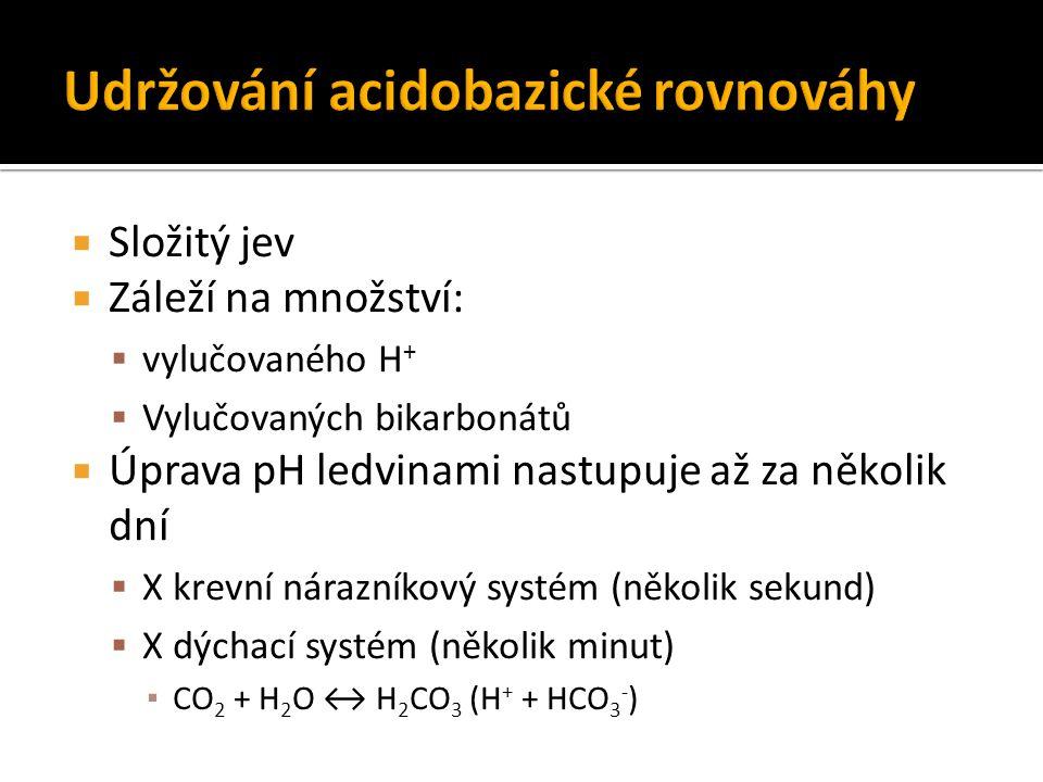  Složitý jev  Záleží na množství:  vylučovaného H +  Vylučovaných bikarbonátů  Úprava pH ledvinami nastupuje až za několik dní  X krevní nárazní