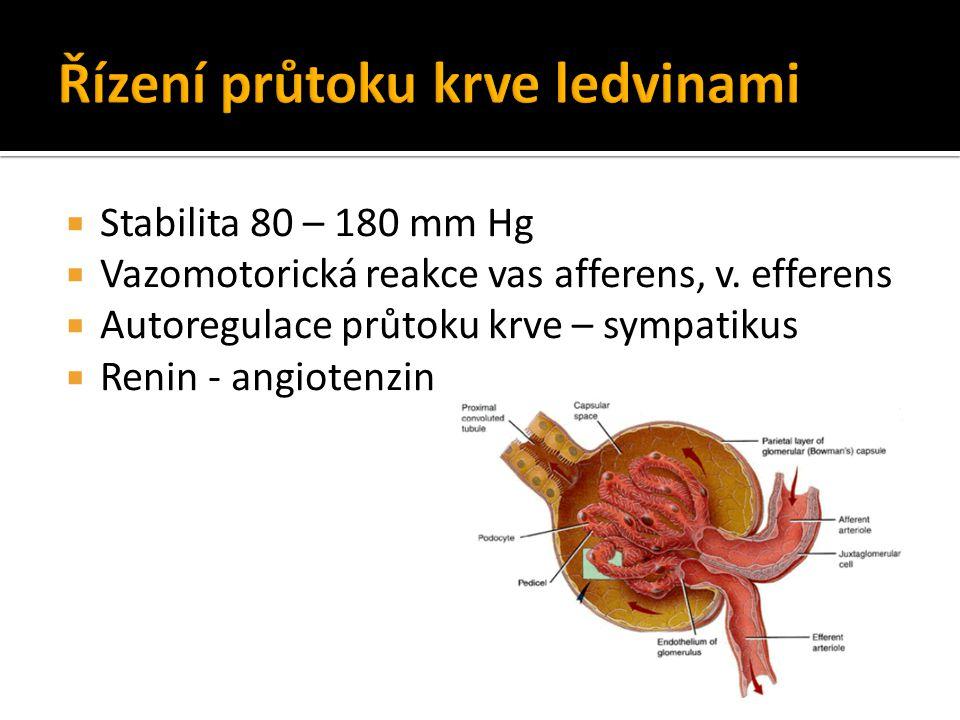  Stabilita 80 – 180 mm Hg  Vazomotorická reakce vas afferens, v. efferens  Autoregulace průtoku krve – sympatikus  Renin - angiotenzin