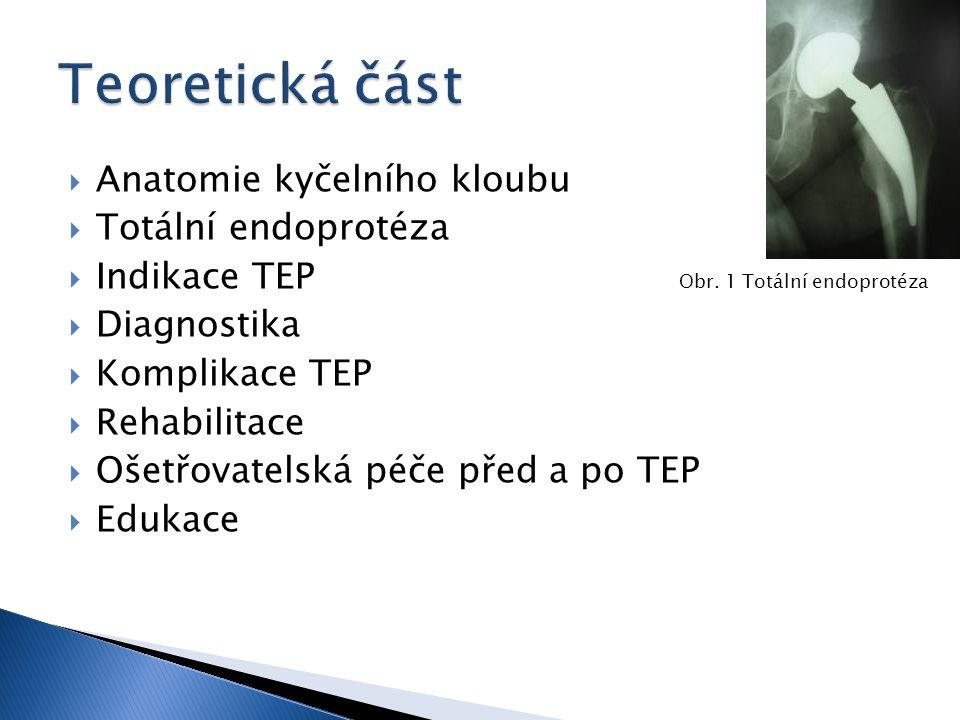  Anatomie kyčelního kloubu  Totální endoprotéza  Indikace TEP Obr. 1 Totální endoprotéza  Diagnostika  Komplikace TEP  Rehabilitace  Ošetřovate