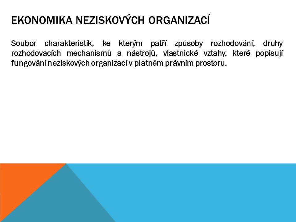 TEORETICKÉ VYMEZENÍ POJMU NEZISKOVÁ ORGANIZACE  L.M.