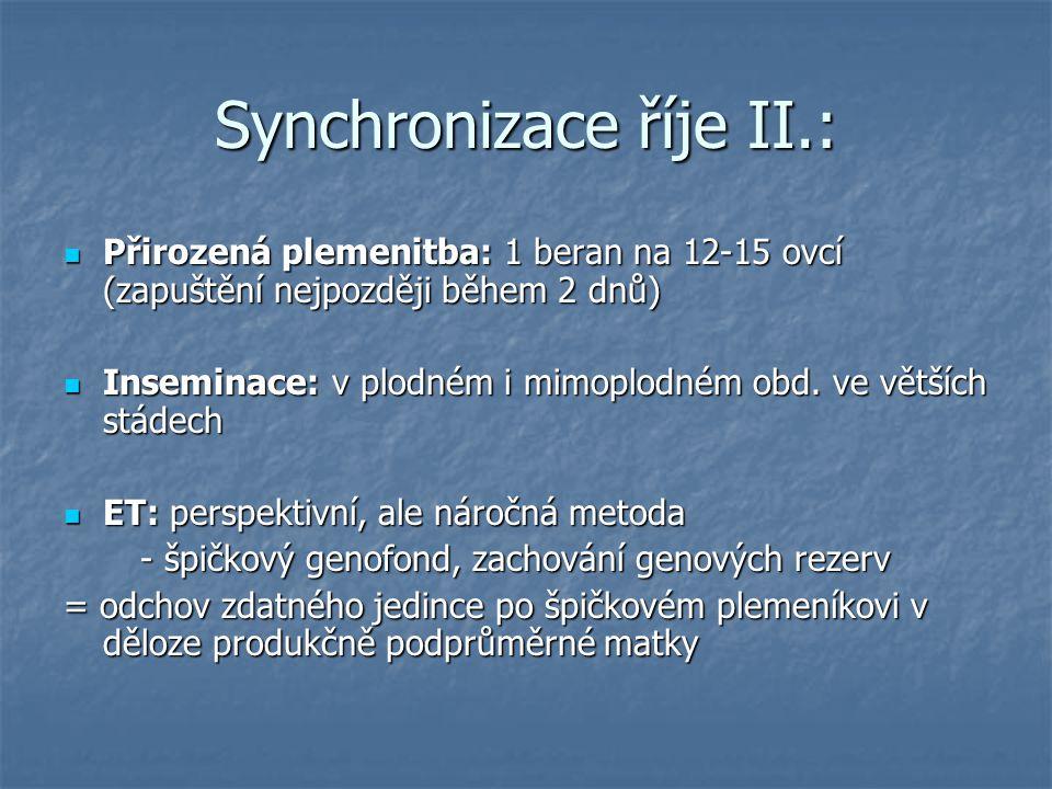 Synchronizace říje II.: Přirozená plemenitba: 1 beran na 12-15 ovcí (zapuštění nejpozději během 2 dnů) Přirozená plemenitba: 1 beran na 12-15 ovcí (za
