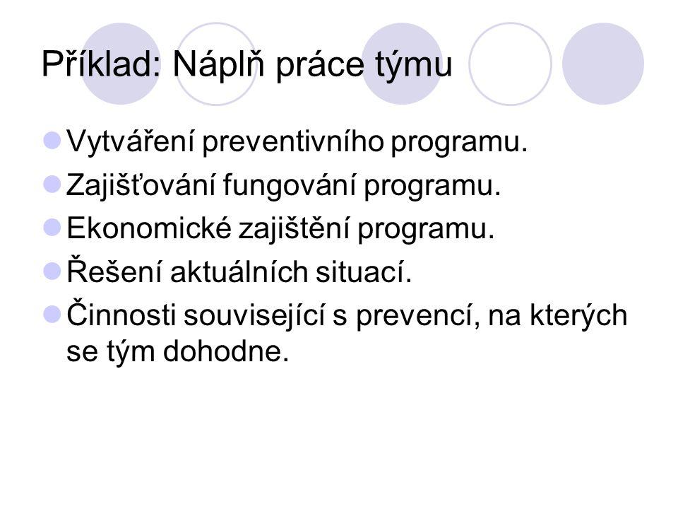 Příklad: Náplň práce týmu Vytváření preventivního programu.