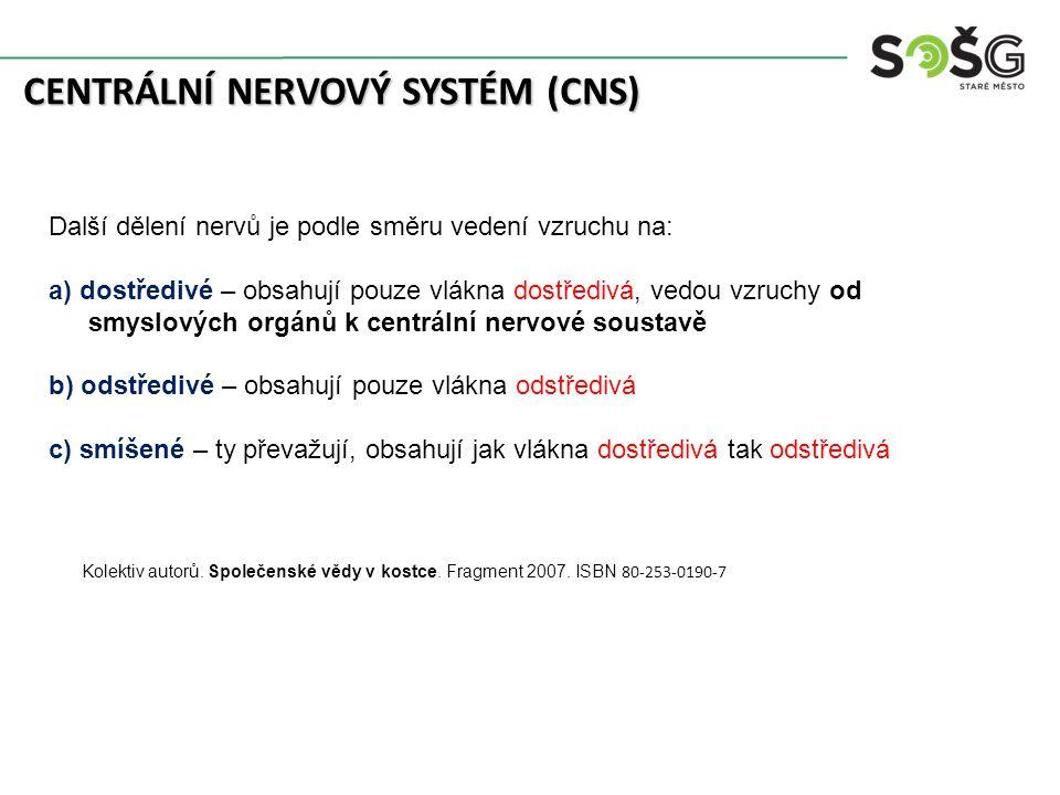 CENTRÁLNÍ NERVOVÝ SYSTÉM (CNS) Další dělení nervů je podle směru vedení vzruchu na: a) dostředivé – obsahují pouze vlákna dostředivá, vedou vzruchy od smyslových orgánů k centrální nervové soustavě b) odstředivé – obsahují pouze vlákna odstředivá c) smíšené – ty převažují, obsahují jak vlákna dostředivá tak odstředivá Kolektiv autorů.