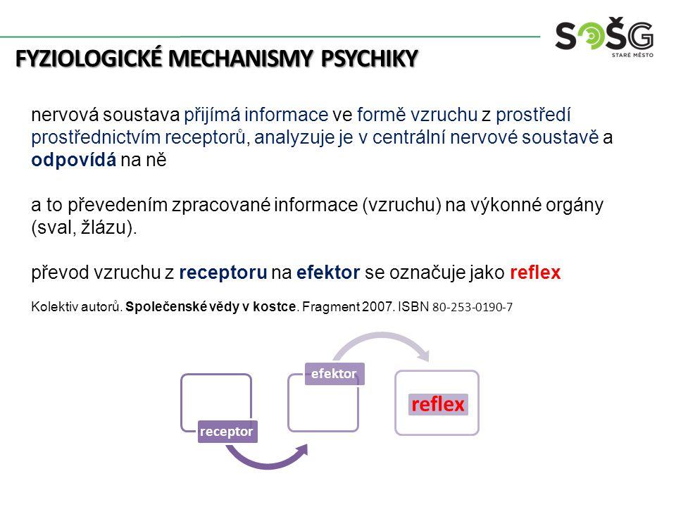FYZIOLOGICKÉ MECHANISMY PSYCHIKY nervová soustava přijímá informace ve formě vzruchu z prostředí prostřednictvím receptorů, analyzuje je v centrální n