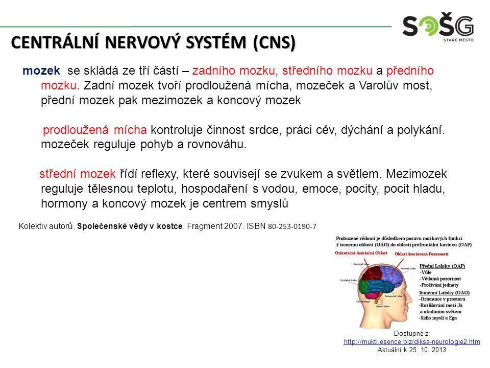 CENTRÁLNÍ NERVOVÝ SYSTÉM (CNS) mozek se skládá ze tří částí – zadního mozku, středního mozku a předního mozku. Zadní mozek tvoří prodloužená mícha, mo