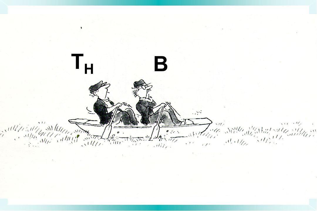 THTH B