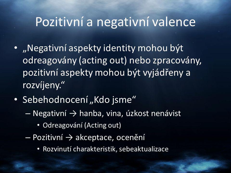 """Pozitivní a negativní valence """"Negativní aspekty identity mohou být odreagovány (acting out) nebo zpracovány, pozitivní aspekty mohou být vyjádřeny a"""