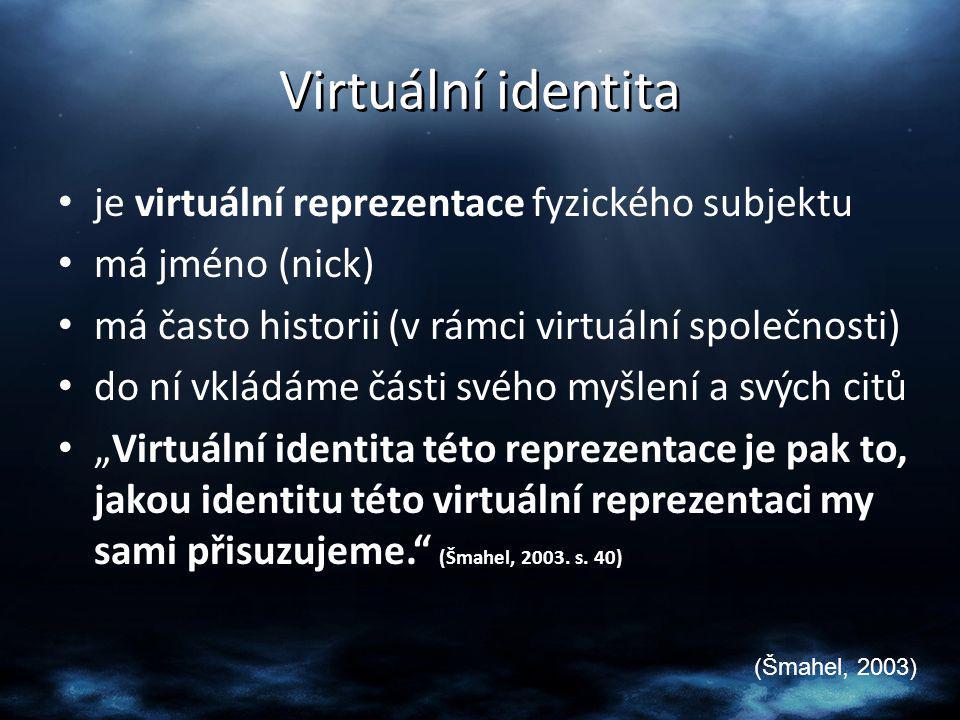Osobní virtuální identita – vyjadřuje, čím jsem jako osoba ve virtuálním prostředí, či spíše čím je moje reprezentace této osoby ve virtuálním prostředí Sociální virtuální identita – charakterizuje, kam patřím ve virtuálním prostředí, čeho jsem součástí, kam patří moje virtuální reprezentace (Šmahel, 2002c)