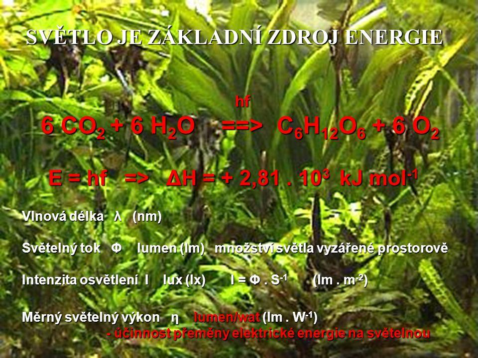 SVĚTLO JE ZÁKLADNÍ ZDROJ ENERGIE hf 6 CO 2 + 6 H 2 O ==> C 6 H 12 O 6 + 6 O 2 E = hf => ΔH = + 2,81. 10 3 kJ mol -1 Vlnová délka λ (nm) Světelný tok Φ