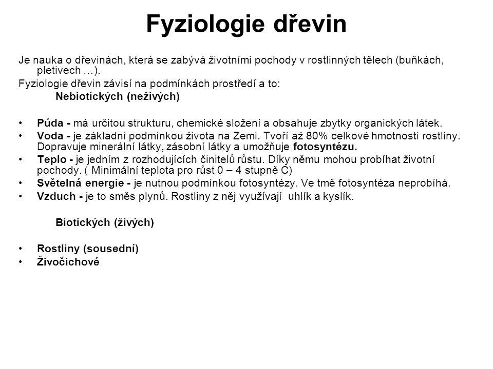 Fyziologie dřevin-obrázky Obr.1