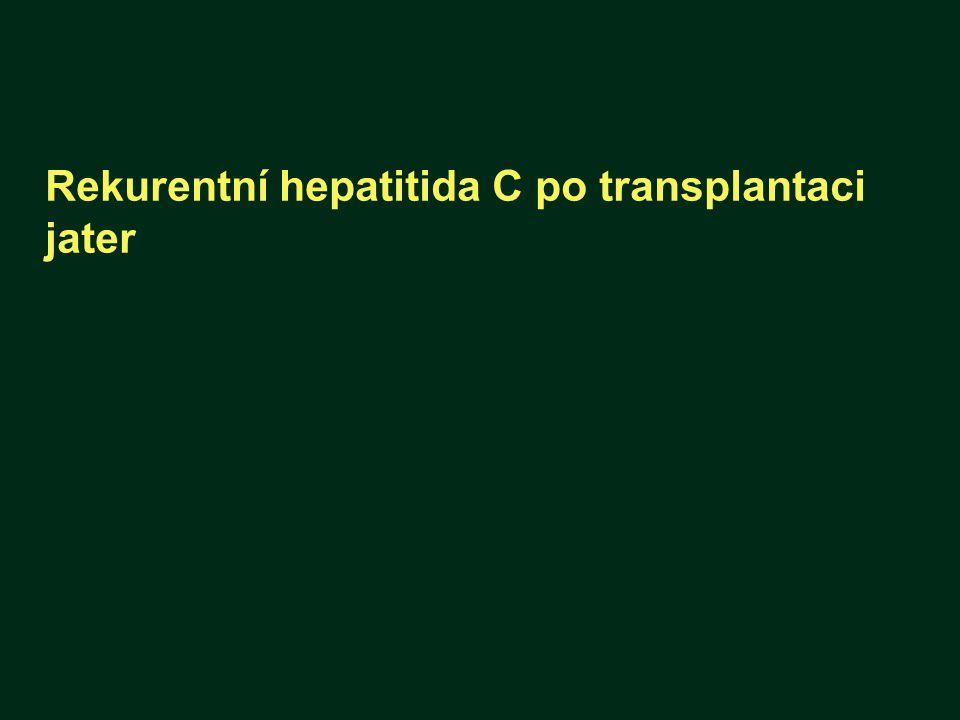 Rekurentní hepatitida C po transplantaci jater