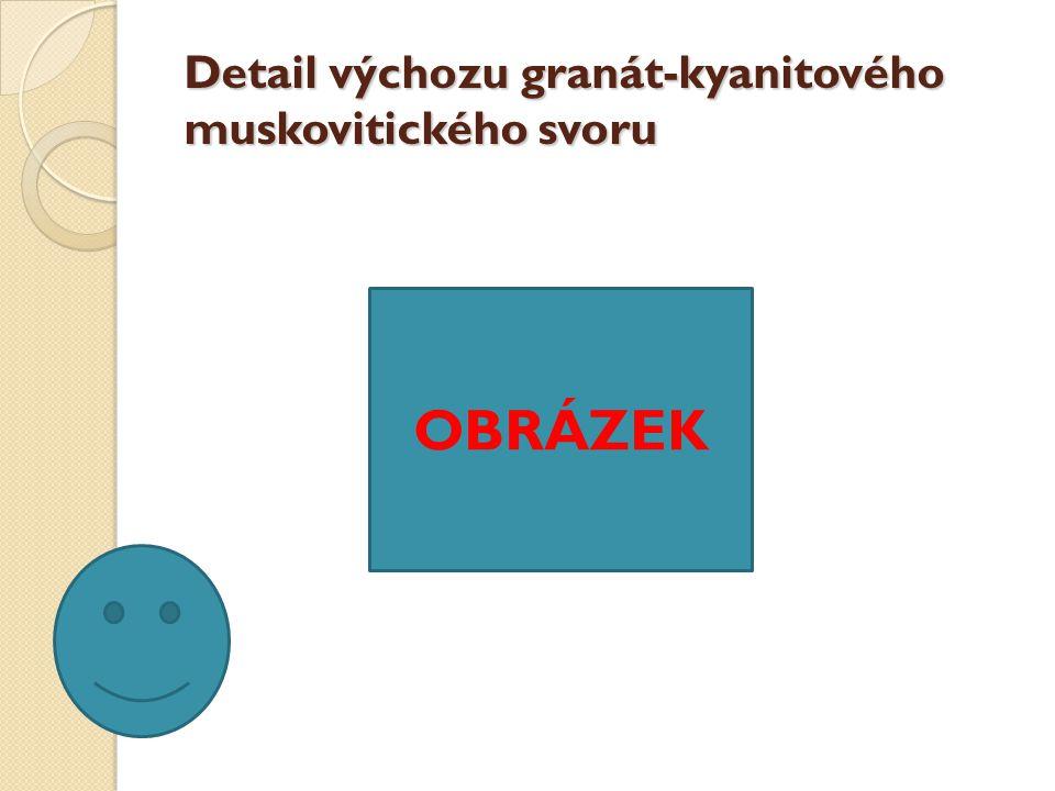 Detail výchozu granát-kyanitového muskovitického svoru OBRÁZEK