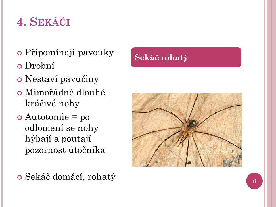 4. S EKÁČI 8 Připomínají pavouky Drobní Nestaví pavučiny Mimořádně dlouhé kráčivé nohy Autotomie = po odlomení se nohy hýbají a poutají pozornost útoč