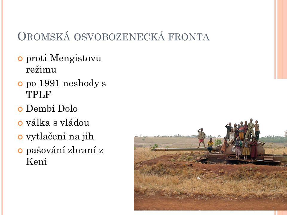 O ROMSKÁ OSVOBOZENECKÁ FRONTA proti Mengistovu režimu po 1991 neshody s TPLF Dembi Dolo válka s vládou vytlačeni na jih pašování zbraní z Keni