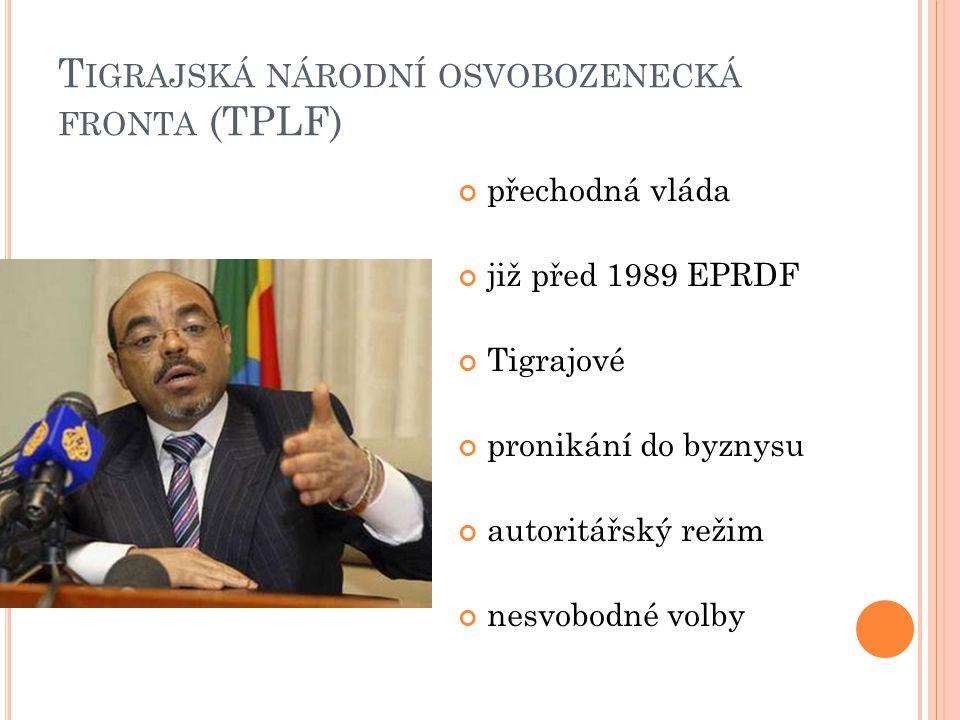 T IGRAJSKÁ NÁRODNÍ OSVOBOZENECKÁ FRONTA (TPLF) přechodná vláda již před 1989 EPRDF Tigrajové pronikání do byznysu autoritářský režim nesvobodné volby